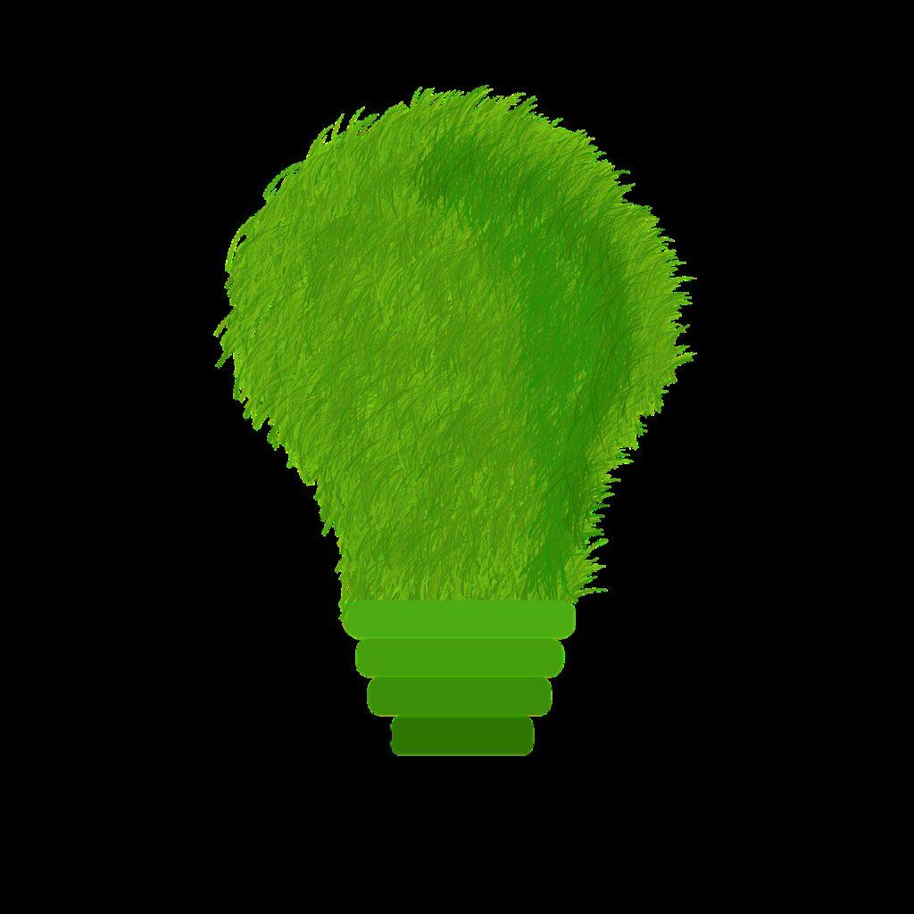 green, ecology, echo